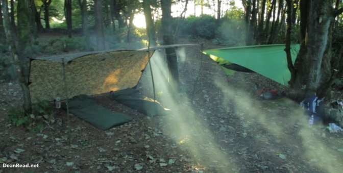 forest-wild-camp-dji-hammock11